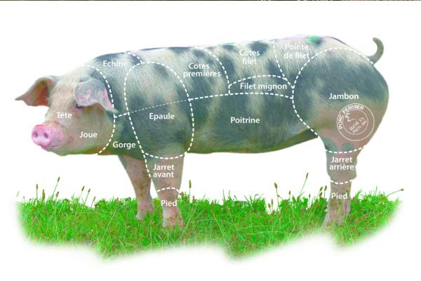 porc-fermier